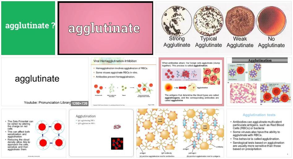 Agglutinate